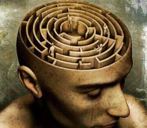 Hjernen som en labyrint