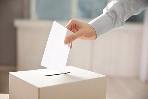 Hvilke faktorer påvirker måten du stemmer på?