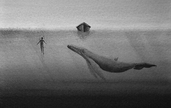 Hval og menneske under båt