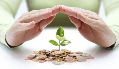 Plante vokser fra penger