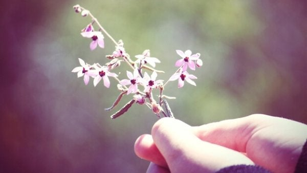 Hånd som holder blomster
