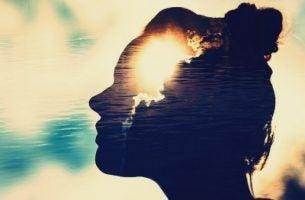 Magnetiske sinn: Mennesker som er ivrige etter å lære