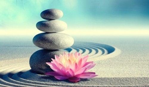 De 7 Zen-budene som vil forandre livet ditt