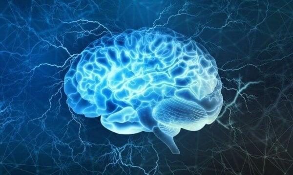 Hjerne slapper av til musikk