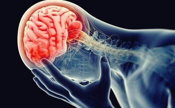 Inflammert hjerne