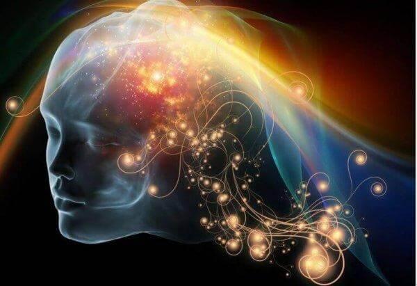 En hjerne i ulike farger.