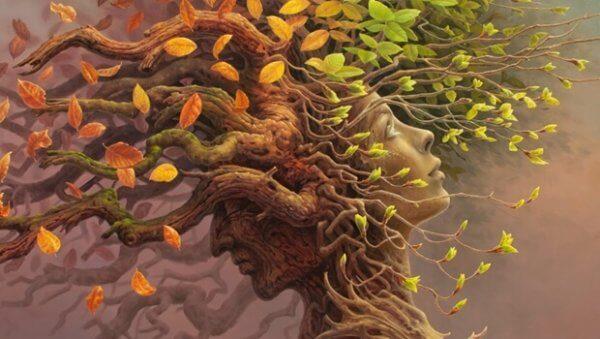 Kognitiv reserve: et avgjørende skritt fremover i hjernens evolusjon