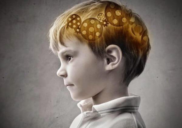 tannhjul i hjerne