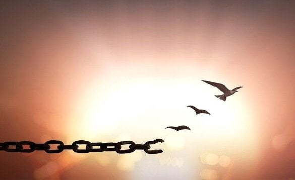 7 fantastiske setninger om tilgivelse