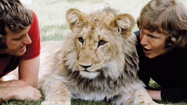 Den hjertevarmende historien om løven Christian