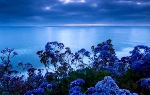 Stresslindrende farge: Blå