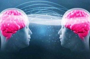 Tryptofan og serotonin
