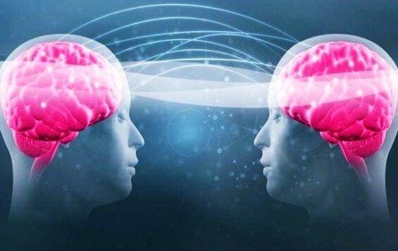 Tryptofan og serotonin: Lær hvorfor ditt velvære avhenger av dem