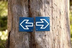 Hvilken vei å gå for å unngå frykt?