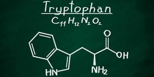 tryptofan-kjemisk-struktur-