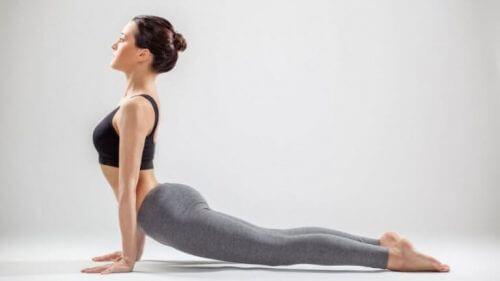 Nybegynner yoga, hund ser opp