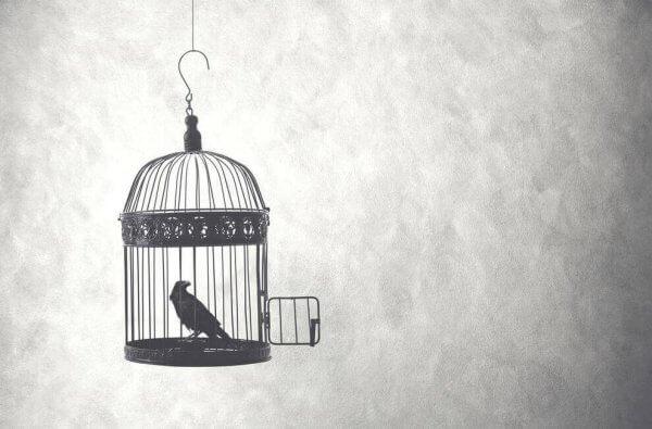 Storni refererer til forholdet som et bur.