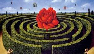 Surrealistisk bilde av en rose midt i en labyrint