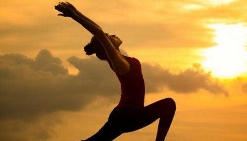 Seitai: kulturen av harmoni og helse