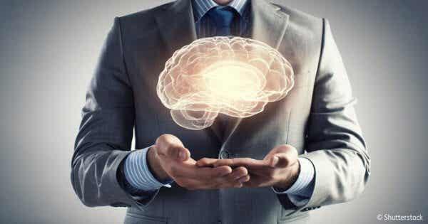 Den menneskelige hjernen - 7 gåter og mysterier