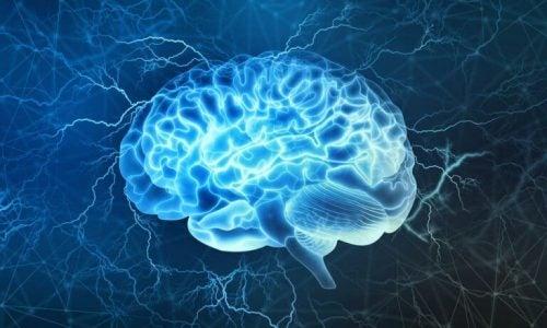 Hjernetsunami