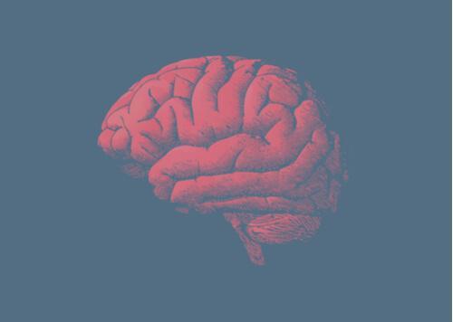 Svaret på hvorfor hjernen eldes ligger i genene dine