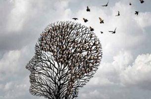 Albert Ellis' REBT: rasjonell emotiv adferdsterapi