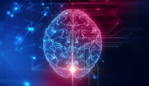 Den orbitofrontale cortexen: Basen av vår sosiale oppførsel