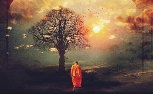 Asiatisk visdom og buddhist