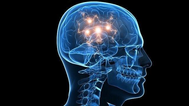 Illustrasjon av prosessen i hjernen