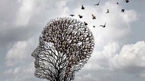 Heuristikker er hjernens egne snarveier