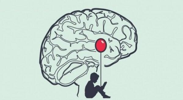Amygdala spiller en stor rolle for endringene i en løgners hjerne