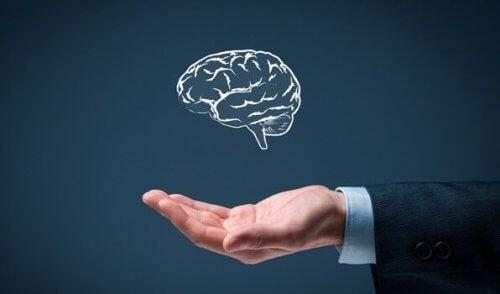 De seks reglene for enkel intelligens
