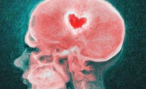 Hjernen under et brudd: Vitenskapen bak et knust hjerte
