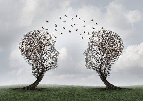 to hjerner med fugler