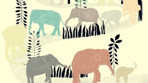 Elefanten og hans brud fik hjelp av hele flokken.