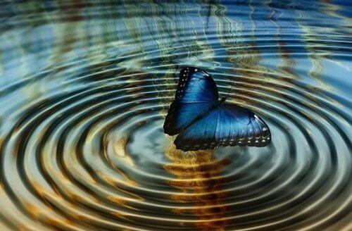"Kaosteori eller ""sommerfugleffekten"""