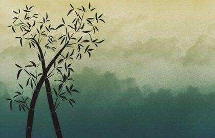 Å være som bambus: Tålmodig, sterk og fleksibel