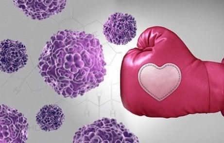 En rosa boksehanske som stanser kreftceller