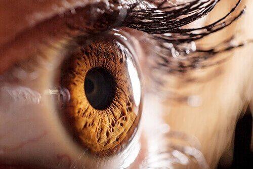 Et øye