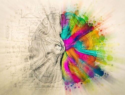 Illustrasjon av sinnets emosjonelle og rasjonelle sider.
