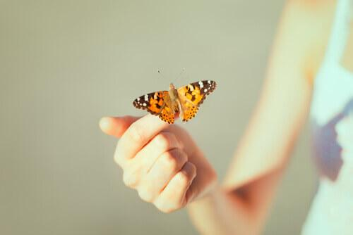 Kreativ håpløshet bruker empati for å la pasienten se ting de ikke trenger i livene sine.