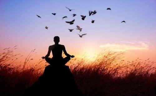 Buddhistisk munk mediterer på feilene som blokkerer bevisstheten
