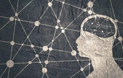 nett i hjernen