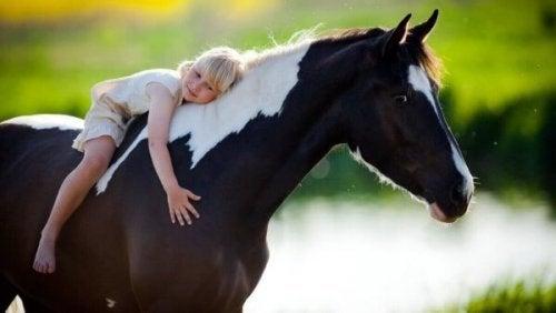 Jente klemmer en hest: heste-assistert terapi