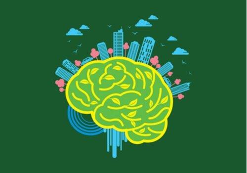 Nevroarkitektur: Miljøets kraft over hjernen
