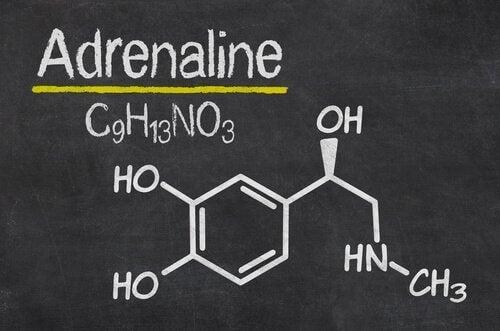 Den kjemiske strukturen av adrenalin.