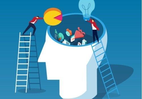 Kognitiv last: En teori av John Sweller