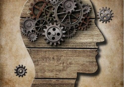 kognitiv-last-teori