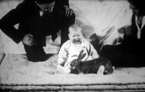 Her ser vi lille Albert reagere med frykt på nærværet av en kanin.